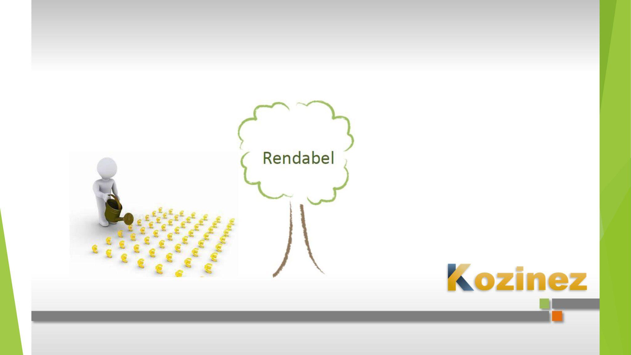 Presentatie_Kozinez-8
