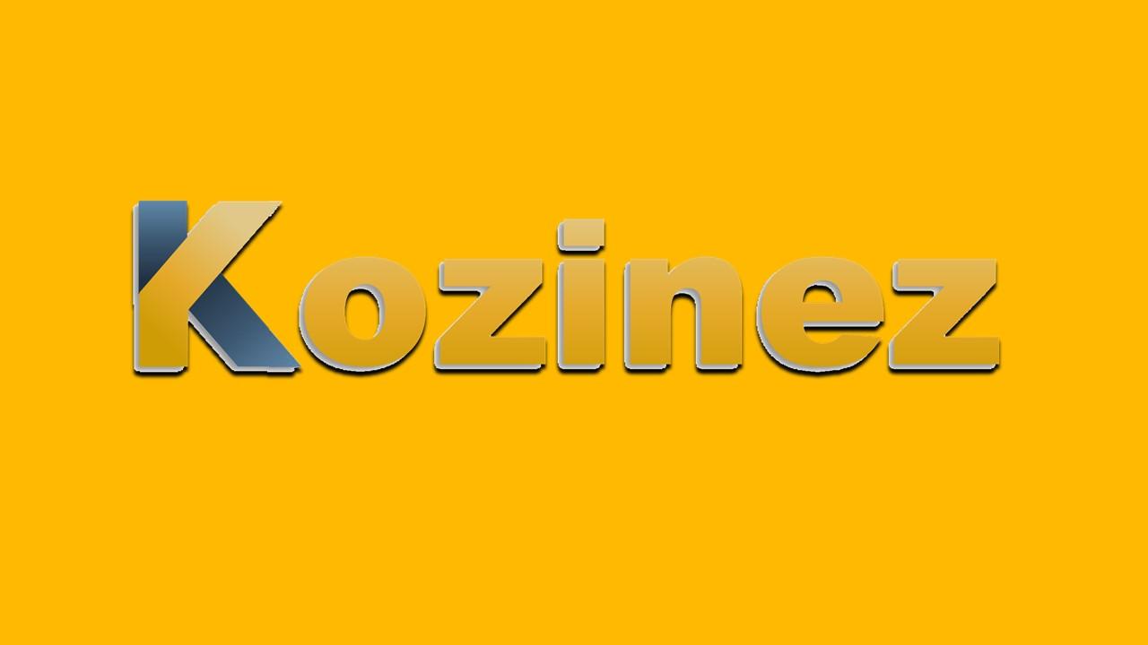 Tinyhouses-van-Kozinez-10
